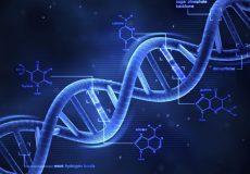 تشخیص بیماری های ژنتیکی با سیستم تست DNA کانن